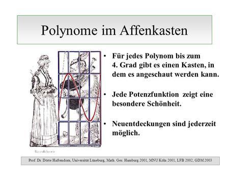 Polynome im Affenkasten Für jedes Polynom bis zum 4. Grad gibt es einen Kasten, in dem es angeschaut werden kann. Jede Potenzfunktion zeigt eine besondere.